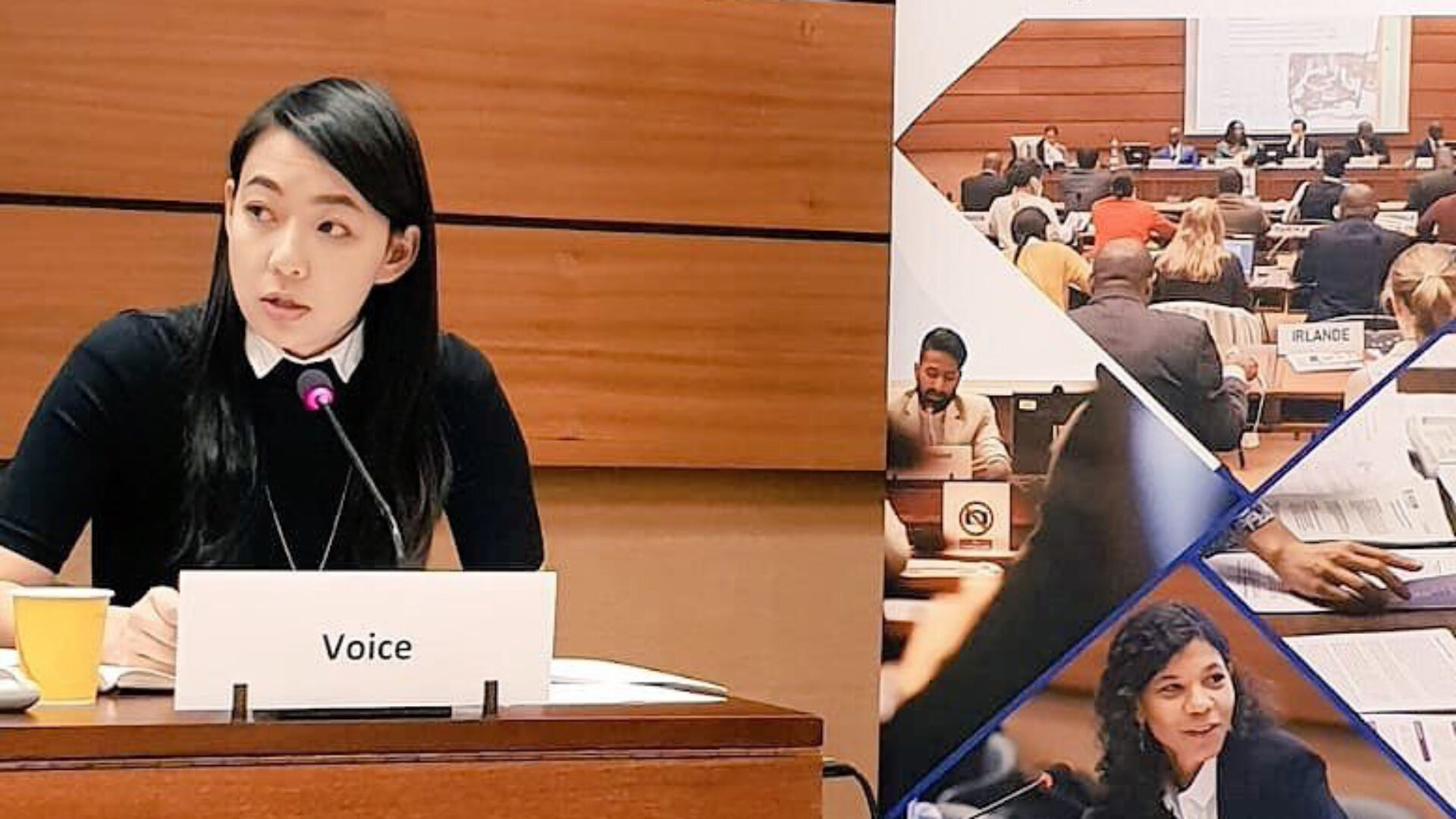 Việt nam: Chúng tôi hy vọng các quốc gia thành viên Liên Hiệp Quốc sẽ lắng nghe Xã hội dân sự.