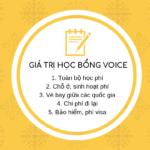 Hỏi đáp về Học bổng Xã hội Dân sự VOICE