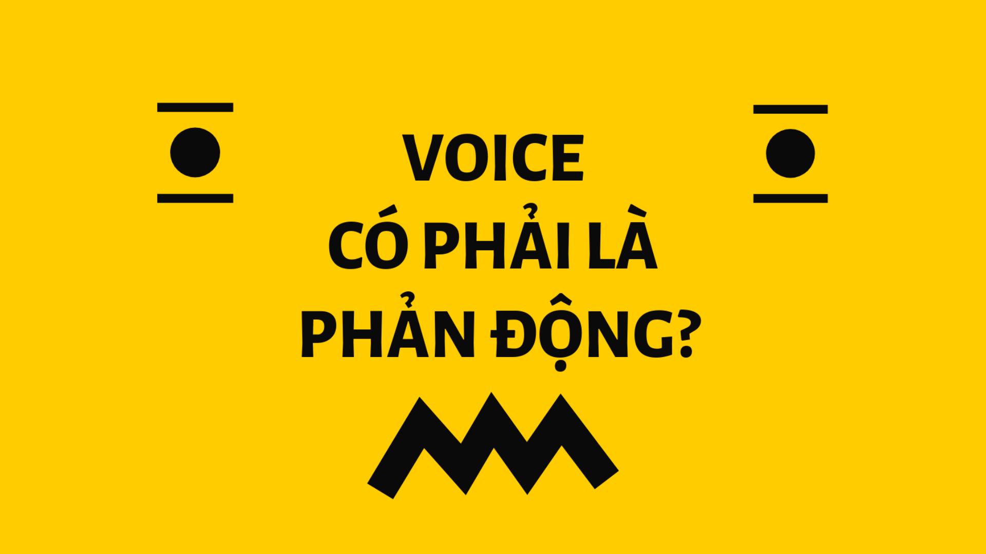 (Tiếng Việt) Giải đáp: Học bổng Xã hội Dân sự VOICE có phải là phản động?