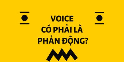Giải đáp: Học bổng Xã hội Dân sự VOICE có phải là phản động?
